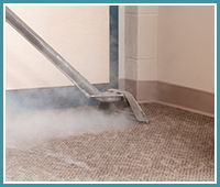 Carpet Stain Removal in Friendswood TX